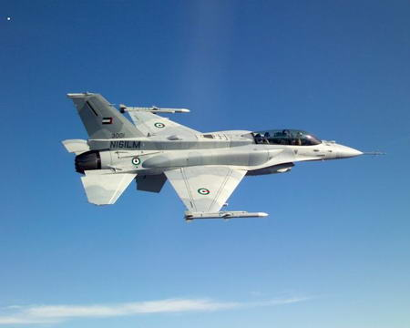 F 16 (戦闘機)の画像 p1_12