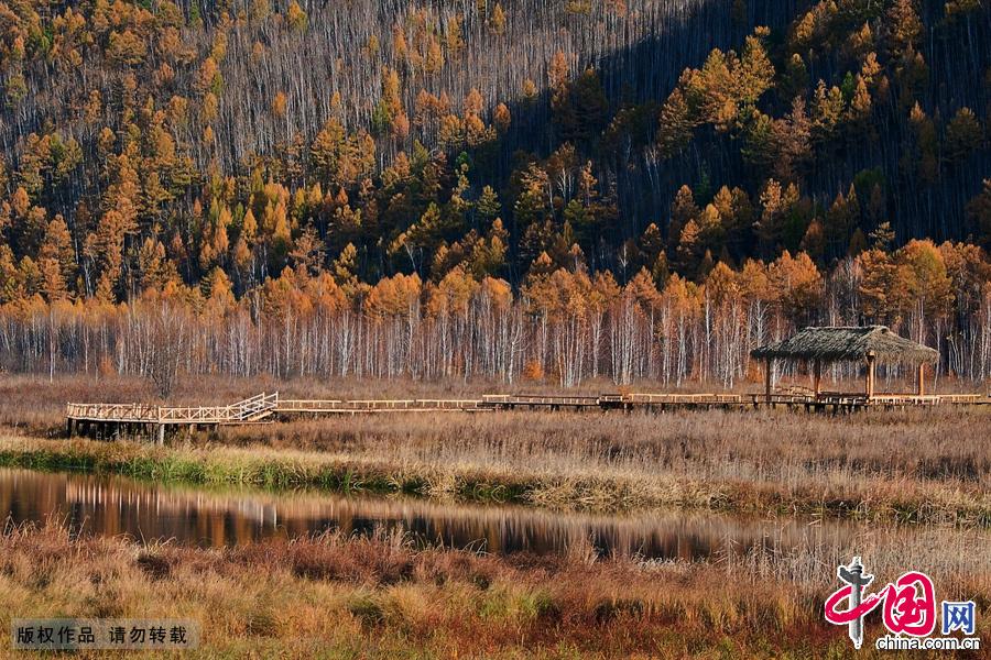 漠河北极村是我国大陆最北端的临江小镇。图为北极村自然风光。中国网图片库 张旭摄影