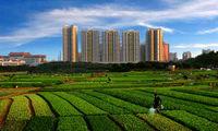 土地制度改革が中国経済改革の突破口に