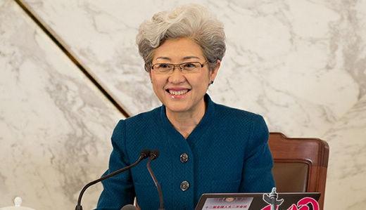 傅瑩報道官:中国の平和的な発展が成功の道に