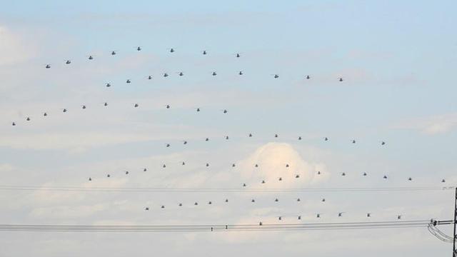 100機超の軍機、抗戦勝利70周年記念日閲兵式の予行演習に参加