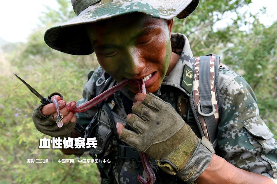 中国陸軍の勇ましい兵士 蛇の肉...