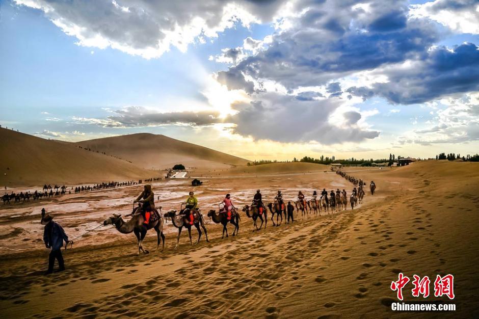 夏の観光ピークを迎える敦煌 1キロに及ぶ観光ラクダの隊列コメント