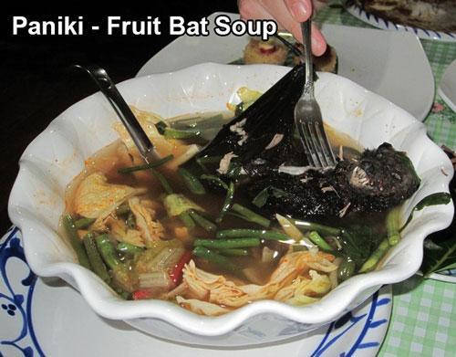 中国 コウモリ 料理