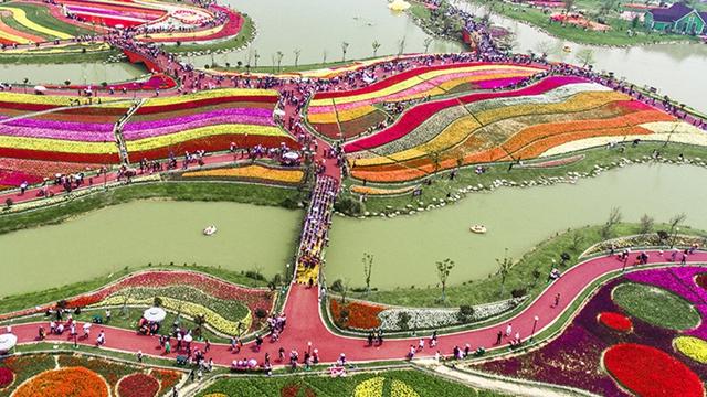 江蘇省塩城のオランダ風花畑を空撮、チューリップの美しいカーペット