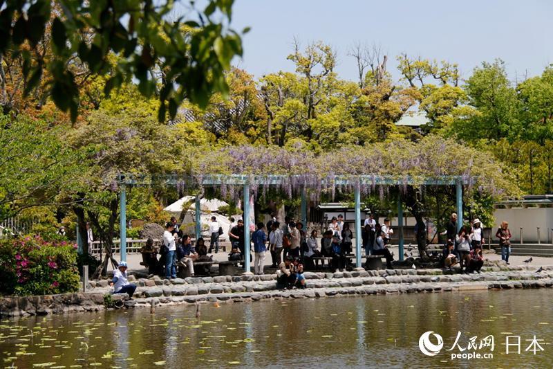 日本镰仓一处景观
