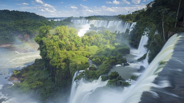 世界の美しい森林 天国のような景色の数々