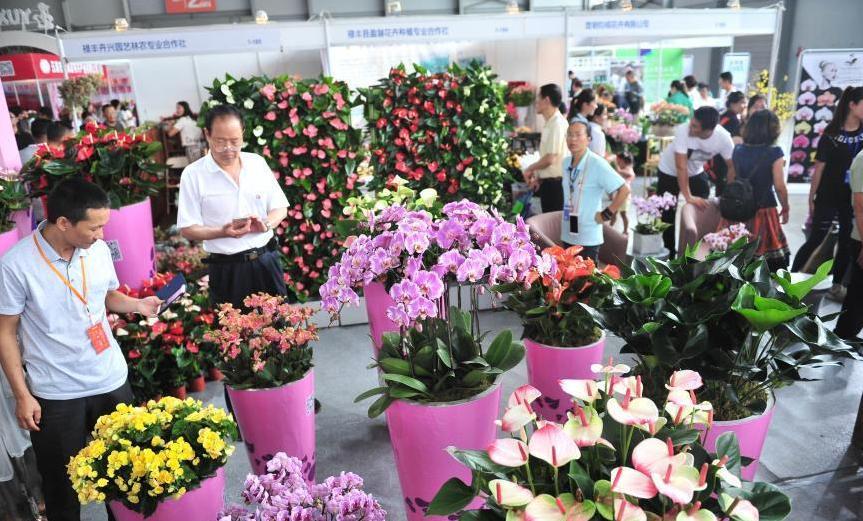 昆明国際花卉展が開催 雲南省