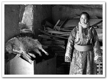 Жизнь кочевников в объективе фотографа