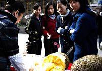 Ярмарка, посвященная празднованию 400 дней до открытия ЭКСПО-2010 в Шанхае
