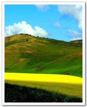 Прекрасная степь Уланьмаоду