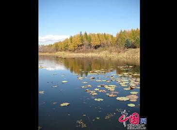 Осенние пейзажи на севере Китая
