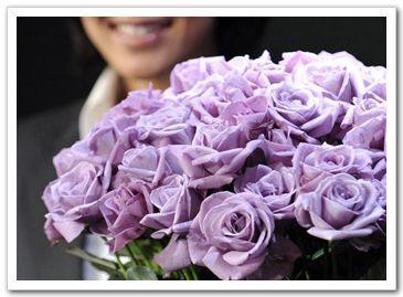 В Японии удачно выращена трансгенная синяя роза