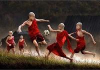 Красивейшие снимки конкурса цифровых фотографий 2009 года