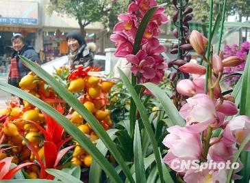 Свежие цветы пользуются популярностью в городе Сучжоу