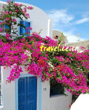 Греция: белые домики, синее море и розовые цветы1