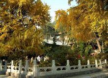 Монастырь Таньчжэсы