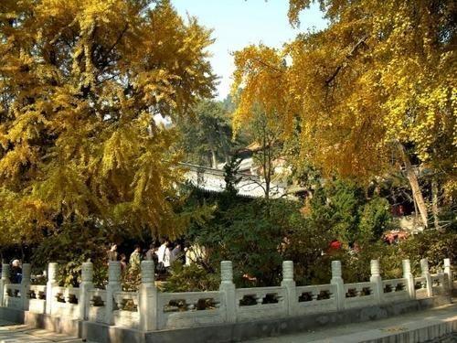 Десятка самых известных монастырей в Пекине