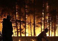 Ряд высокопоставленных военных чиновников, плохо исполнивших свои обязанности во время пожара, были уволены