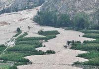 Поле после оползней в уезде Чжоуцюй с высоты птичьего полета