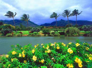 Летний рай и жемчужина Тихого океана —Красочные Гавайи