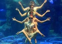 Эстетическое наслаждение--подводный балет