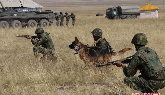 Вторые совместные тренировки «Мирная миссия-2010»