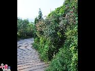 Гора имеет три пика - два низкие и один высокий. Она похожа на подставку для кистей, поэтому гора называется «Бицзяшань». Она ежегодно принимает около миллиона туристов и является известной туристической зоной в Китае.