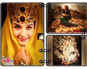 16-я Синьцзянская фотовыставка в г. Урумчи