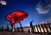 Лучшие фотографии с 16-й Синьцзянской фотовыставки: коммерческие фотографии