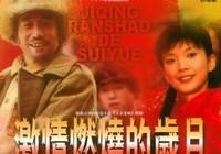 Китайско-российский фестиваль военных фильмов