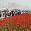 Всемирная выставка садово-паркового искусства Сиань-2011 распахнула свои двери для посетителей