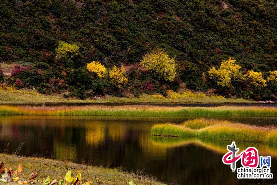 Очаровательный государственный парк «Пуцода» в пейзажном районе «Три параллельные реки»