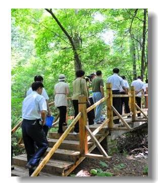 Провинция Цзилинь: путешествие по лесам