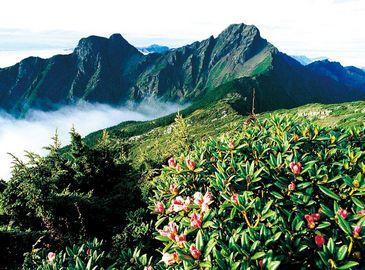 Очаровательные пейзажи гор Юйшань провинции Тайвань