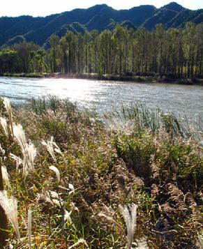 Коридор вдоль реки танхэ эксклюзив