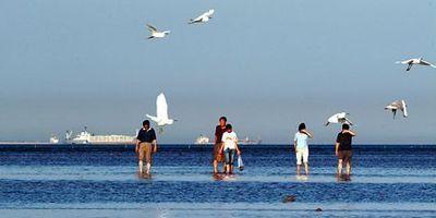 Красивый морской пейзаж в Бэйдайхэ