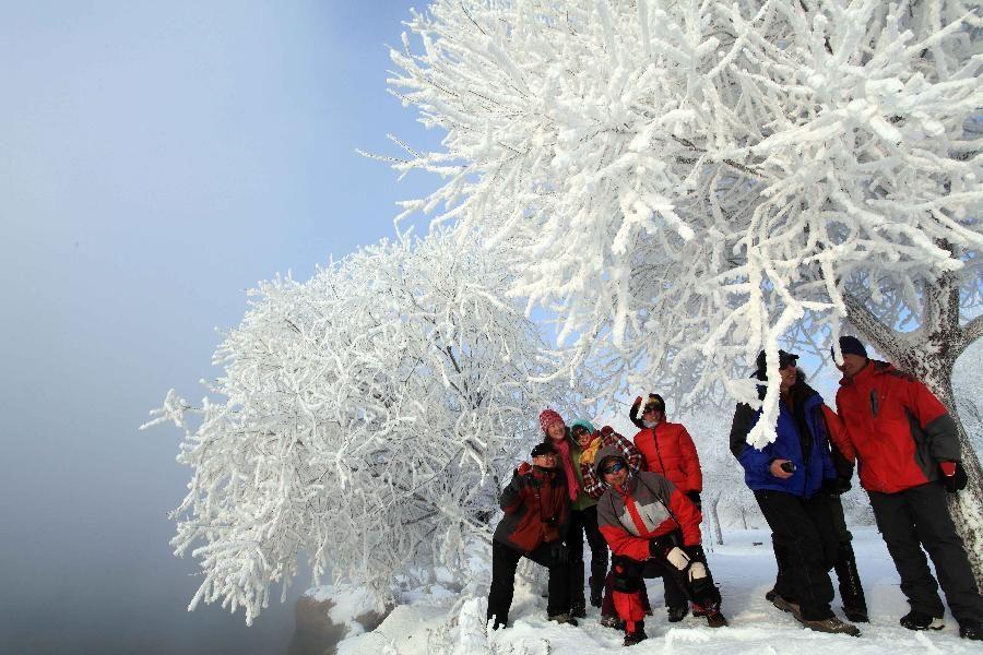 Иней - зимнее одеяние деревьев в деревне Ашэнь