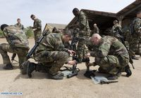 В военной операции в Мали приняло участие 1700 французских военнослужащих