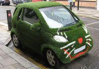Оригинальные ?травяные? машины