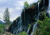 Экологическое страхование придает колорит концепции «Красивый Китай»