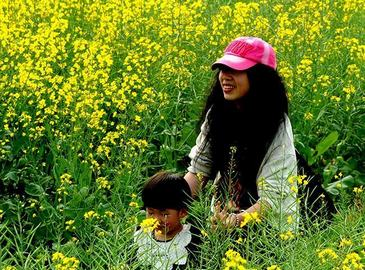 Цветущие рапсы в провинции Фуцзянь привлекают туристов