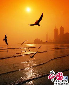 Красивые городские пейзажи Циндао