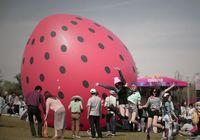 Фото: последнее безумие на музыкальном фестивале «Strawberry» 2013 в Пекине