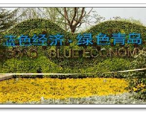 Парк Циндао на Пекинской ярмарке садово-паркового искусства показывает новый облик «синей экономики»