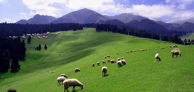 Горы Тянь-Шань /СУАР, Китай/ включены в реестр объектов всемирного наследия ЮНЕСКО