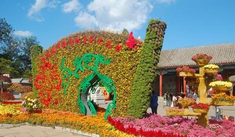 Осень в парке Юаньминъюань: культурный фестиваль
