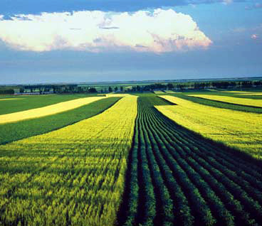 В Китае обнародован индекс экологически чистого развития