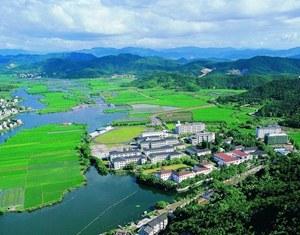 Жители провинции Чжэцзян полны уверенности в реформе