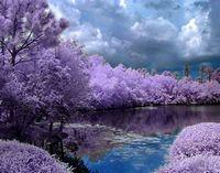 Необыкновенная природная красота